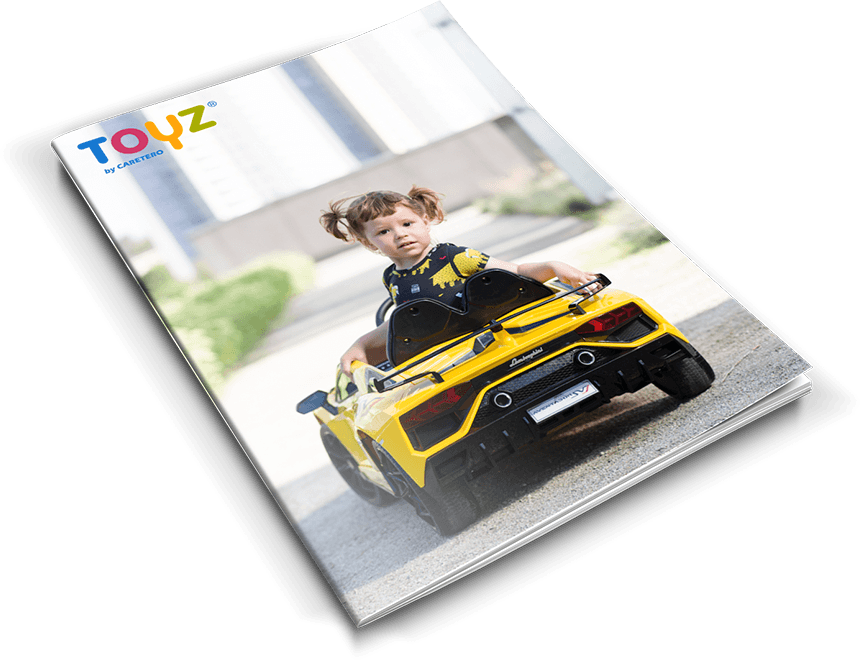 https://www.toyz.pl/wp-content/uploads/2020/09/katalog.png